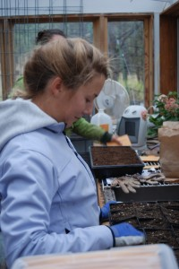 girl inside potting shed planting seeds into seed trays