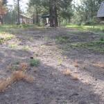 bare dirt, dead weeds on hillside in preparation for planting garden
